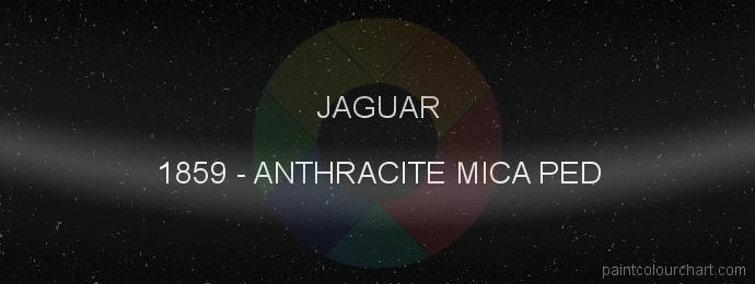 Jaguar paint 1859 Anthracite Mica Ped