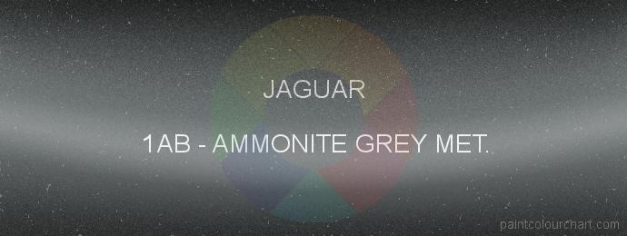 Jaguar paint 1AB Ammonite Grey Met.