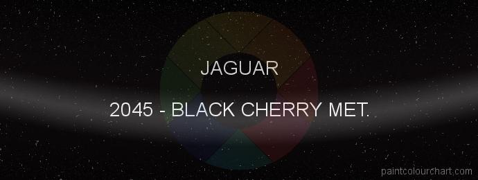 Jaguar paint 2045 Black Cherry Met.