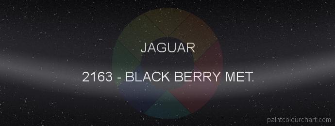 Jaguar paint 2163 Black Berry Met.